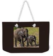Elephant Mom And Baby Weekender Tote Bag