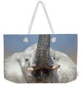 Elephant Portrait Weekender Tote Bag