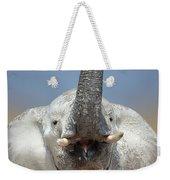 Elephant Portrait Weekender Tote Bag
