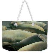 Elephant Seal Pups Weekender Tote Bag