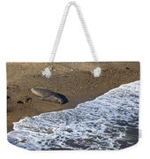 Elephant Seal Sunning On Beach Weekender Tote Bag