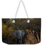 Elephant Trail Weekender Tote Bag