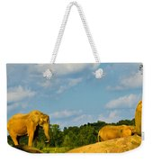 Elephants Among The Rocks. Weekender Tote Bag