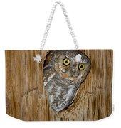 Elf Owl Weekender Tote Bag