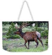 Elk Bull Weekender Tote Bag