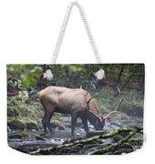 Elk Drinking Water From A Stream Weekender Tote Bag
