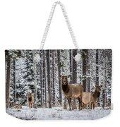 Elk In Jasper Weekender Tote Bag