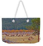 Elk Near Cub Lake Trail In Rocky Mountain National Park-colorado  Weekender Tote Bag