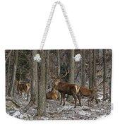 Elk Pictures 45 Weekender Tote Bag