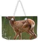 Elk Pictures 74 Weekender Tote Bag
