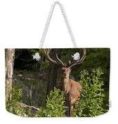 Elk Pictures 82 Weekender Tote Bag