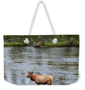 Elk Stag In The Madison River Of Yellowstone National Park Weekender Tote Bag