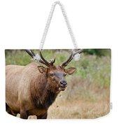 Elk Staring Weekender Tote Bag
