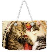 Elmos Nap Time---soft Look Weekender Tote Bag
