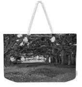 Embraced By Trees Weekender Tote Bag