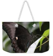 Emerald Peacock Swallowtail Butterfly #6 Weekender Tote Bag