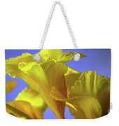 Emerging Into The Light I Weekender Tote Bag