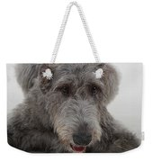 Irish Wolfhound IIi Weekender Tote Bag