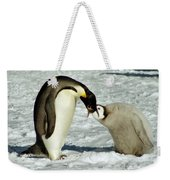 Emperor Penguin Chick Feeding Weekender Tote Bag