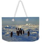Emperor Penguin Group Walking On Ice Weekender Tote Bag