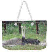 Emu Birds Weekender Tote Bag