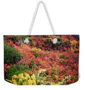 Enchanted Colors Weekender Tote Bag