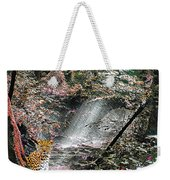 Enchanted Forest - Featured In Wildlife Group Weekender Tote Bag