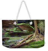 Enchanting Weekender Tote Bag