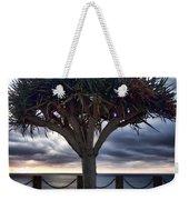 Encinitas Sunset Weekender Tote Bag by Carol Leigh