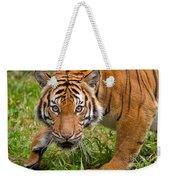 Endangered Species Sumatran Tiger Weekender Tote Bag