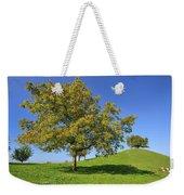 English Black Walnut Tree Switzerland Weekender Tote Bag