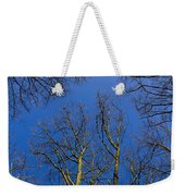 English Forest Trees Weekender Tote Bag