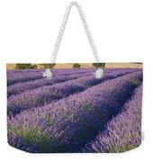 English Lavender Weekender Tote Bag