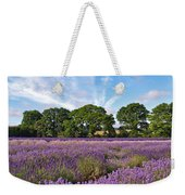 English Lavender Fields In Hampshire Weekender Tote Bag