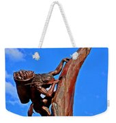 Entrance To Mesa Verde Weekender Tote Bag