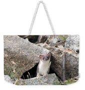 Ermine In Wildlife Weekender Tote Bag