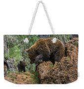 Eurasian Brown Bear 13 Weekender Tote Bag