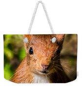 Eurasian Red Squirrel Weekender Tote Bag