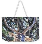 European Red Deer Weekender Tote Bag