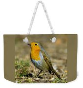 European Robin Square Weekender Tote Bag