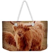 Even Cape Breton Cattle Have Character Weekender Tote Bag