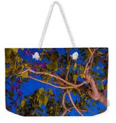 Evening Blues Weekender Tote Bag