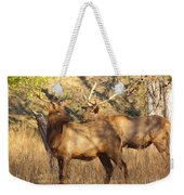Evening Sets On The Elk Weekender Tote Bag