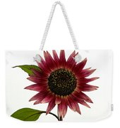 Evening Sun Sunflower 2 Weekender Tote Bag