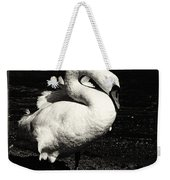 Evening Swan Weekender Tote Bag