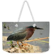 Everglades Green Heron Weekender Tote Bag