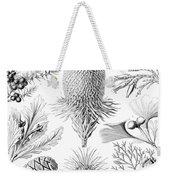 Examples Of Coniferae From Kunstformen Weekender Tote Bag by Ernst Haeckel