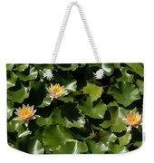 Exotic Colored Waterlilies In The Hot Mediterranean Sun Weekender Tote Bag