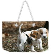 Exploring Beagle Pups Weekender Tote Bag