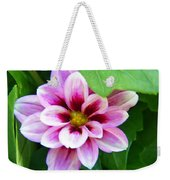 Exquisite Weekender Tote Bag by Aimee L Maher Photography and Art Visit ALMGallerydotcom